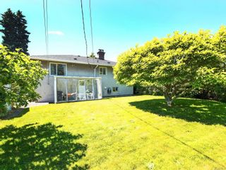 Photo 19: 3205 Carman St in : SE Camosun House for sale (Saanich East)  : MLS®# 878227