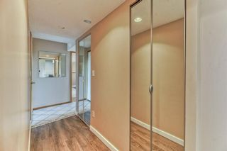 Photo 27: 703 Alderwood Place SE in Calgary: Acadia Detached for sale : MLS®# A1131581