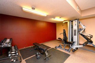 Photo 38: 340 30 Royal Oak Plaza NW in Calgary: Royal Oak Apartment for sale : MLS®# C4188573