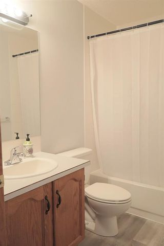 Photo 24: 170 Tipping Close SE: Airdrie Detached for sale : MLS®# A1121179