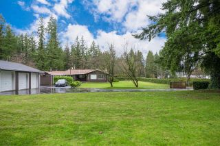 Photo 4: 23588 52 Avenue in Langley: Salmon River House for sale : MLS®# R2238287