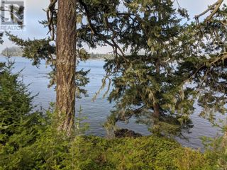 Photo 3: 7170 Sea Cliff Rd in Sooke: Vacant Land for sale : MLS®# 887011