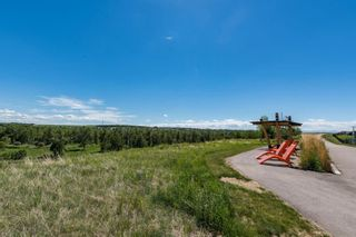Photo 45: 282 Mountainview Drive: Okotoks Detached for sale : MLS®# A1134197