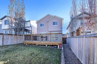 Photo 33: 167 Covemeadow Crescent NE in Calgary: Coventry Hills Detached for sale : MLS®# A1045782