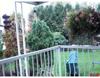 """Photo 6: 3665 244 Street in Langley: Otter District Manufactured Home for sale in """"Langley Grove Estates"""" : MLS®# F2624909"""