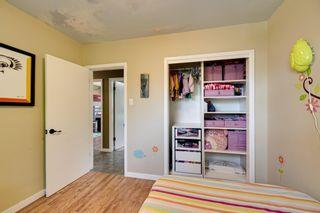 Photo 17: 9628 52 Street in Edmonton: Zone 18 House for sale : MLS®# E4247639