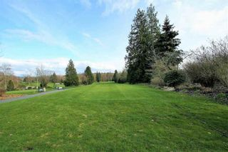 Photo 3: 207 2855 152 STREET in South Surrey White Rock: King George Corridor Home for sale ()  : MLS®# R2220245