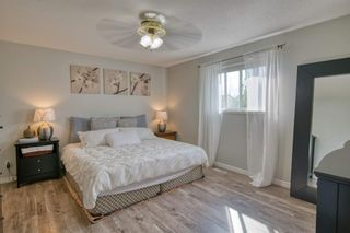 Photo 21: 19 Millview Way SW in Calgary: Millrise Detached for sale : MLS®# A1142853