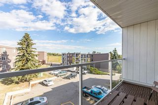 Photo 2: 401C 4455 Greenview Drive NE in Calgary: Greenview Apartment for sale : MLS®# A1052674