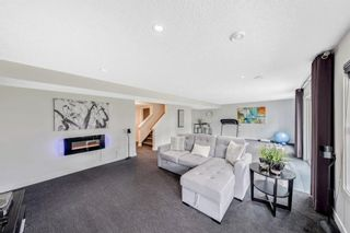 Photo 29: 122 Rainbow Falls Boulevard: Chestermere Detached for sale : MLS®# A1131788