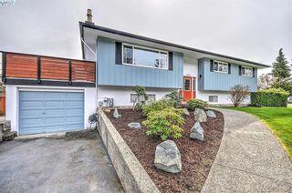 Photo 19: 1510 Edgemont Rd in VICTORIA: SE Gordon Head House for sale (Saanich East)  : MLS®# 783825