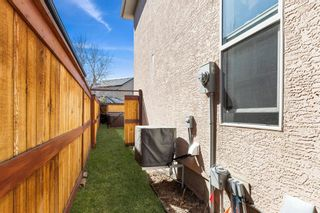 Photo 39: 41 Cranleigh Way SE in Calgary: Cranston Detached for sale : MLS®# A1096562