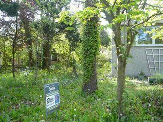 Photo 3: 1705 Haultain St in VICTORIA: Vi Jubilee House for sale (Victoria)  : MLS®# 605225