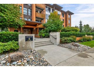 Photo 1: 104 220 SALTER STREET in New Westminster: Queensborough Condo for sale : MLS®# R2506742