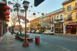 Photo 8: 306 1301 Hillside Ave in : Vi Oaklands Condo for sale (Victoria)  : MLS®# 874676
