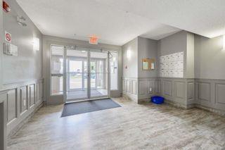 Photo 31: 102 11408 108 Avenue in Edmonton: Zone 08 Condo for sale : MLS®# E4253242