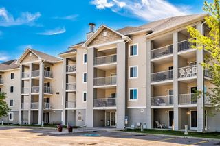 Photo 1: 3209 1620 70 Street SE in Calgary: Applewood Park Apartment for sale : MLS®# A1116068