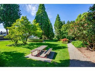 Photo 33: 9 20155 50 Avenue: Townhouse for sale in Langley: MLS®# R2587708