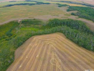 Photo 9: Rm Indian Head 160.39 acres in Indian Head: Farm for sale (Indian Head Rm No. 156)  : MLS®# SK867616