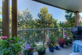 Photo 17: 309 490 Marsett Pl in VICTORIA: SW Royal Oak Condo for sale (Saanich West)  : MLS®# 822080