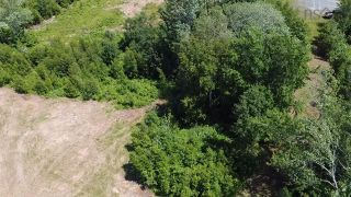 Photo 5: Lot 5 Rockfield Drive in Little Harbour: 108-Rural Pictou County Vacant Land for sale (Northern Region)  : MLS®# 202121848