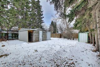 Photo 46: 429 1 Avenue NE: Airdrie Detached for sale : MLS®# A1071965