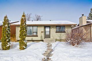 Photo 2: 1244 Falconridge Drive NE in Calgary: Falconridge Detached for sale : MLS®# A1067317