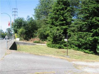 Photo 7: 515 COMO LAKE Avenue in Coquitlam: Coquitlam West Land for sale : MLS®# V840108