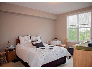 Photo 16: 221 1 Crystal Green Lane: Okotoks Condo for sale : MLS®# C4063698