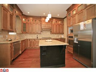 """Photo 5: 7783 211A ST in Langley: Willoughby Heights House for sale in """"Yorkson South"""" : MLS®# F1125790"""