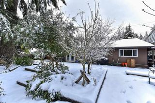 Photo 17: 8617 TERRACE Drive in Delta: Nordel House for sale (N. Delta)  : MLS®# R2136858