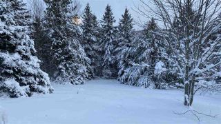 Photo 3: 5535 East River West Side Road in Eureka: 108-Rural Pictou County Residential for sale (Northern Region)  : MLS®# 202100104