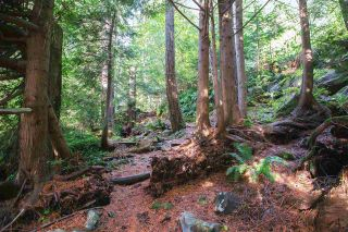 Photo 18: 35 KELVIN GROVE Way: Lions Bay Land for sale (West Vancouver)  : MLS®# R2517333