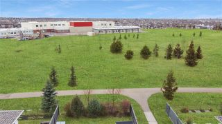 Photo 7: 20204 48 Avenue in Edmonton: Zone 58 House for sale : MLS®# E4236022