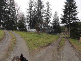 Photo 3: 10017 287 Street in Maple Ridge: Whonnock House for sale : MLS®# R2531129