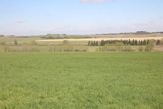 Photo 8: On  Range Road 2.5: Rural Mountain View County Land for sale : MLS®# A1112456