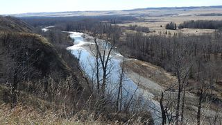 Photo 13: SE 35-20-2W5: Rural Foothills County Residential Land for sale : MLS®# A1101395