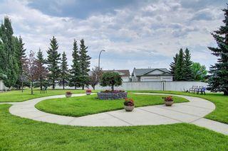 Photo 3: 207 33 Arbour Grove Close NW in Calgary: Arbour Lake Apartment for sale : MLS®# A1135288
