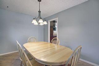 Photo 13: 9832 187 Street in Edmonton: Zone 20 House for sale : MLS®# E4253744