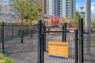 Photo 47: 412 619 Confluence Way SE in Calgary: Downtown East Village Apartment for sale : MLS®# A1118938