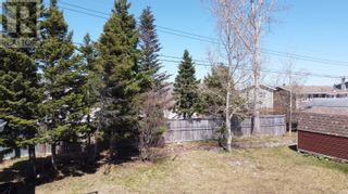 Photo 5: 8 Evergreen Boulevard in Lewisporte: House for sale : MLS®# 1226650