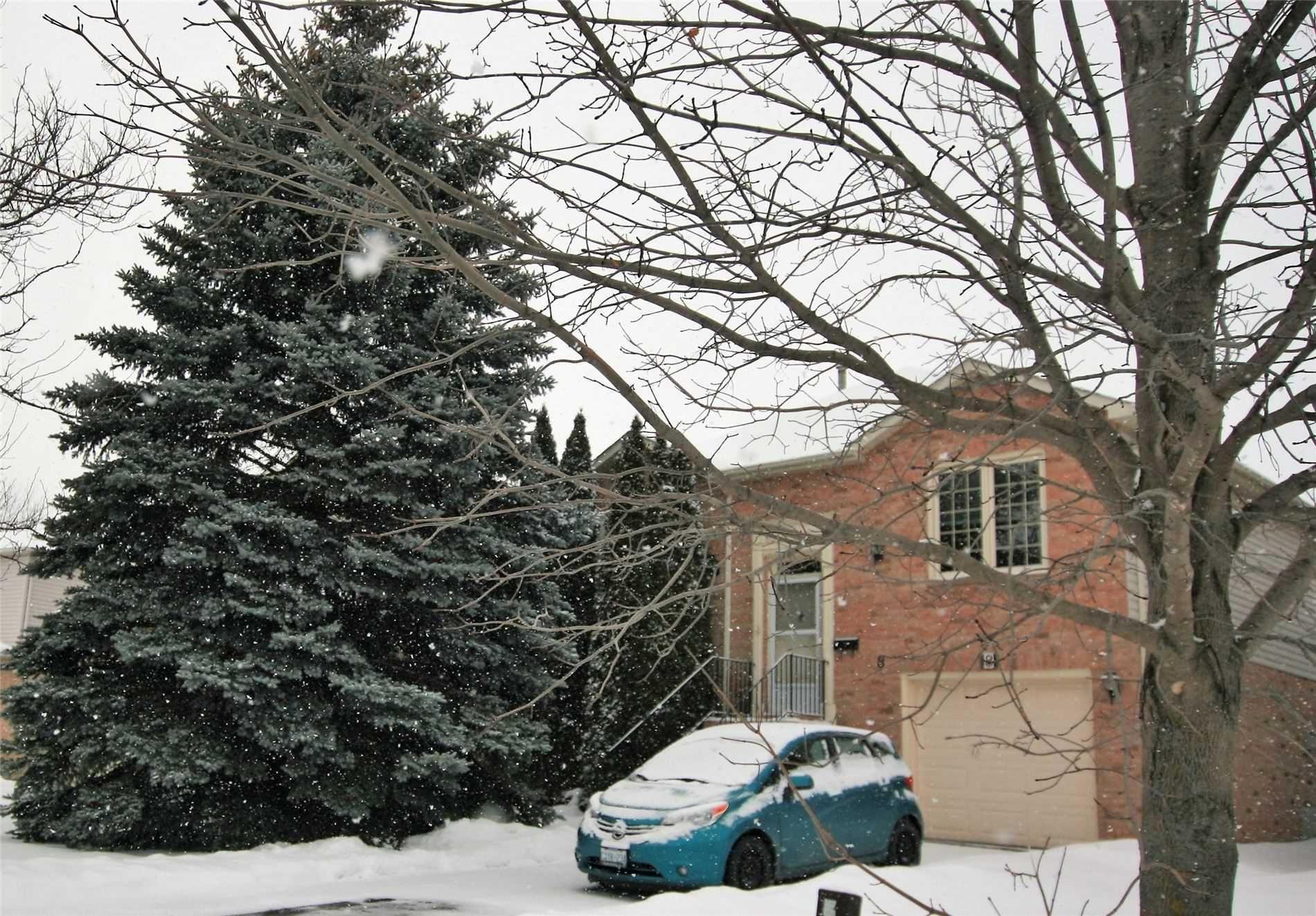 Main Photo: 8 Lawton Court: Orangeville House (Bungalow-Raised) for sale : MLS®# W5094848