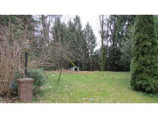 Photo 7: 529 LINTON Street in Coquitlam: Central Coquitlam House for sale : MLS®# V1054564
