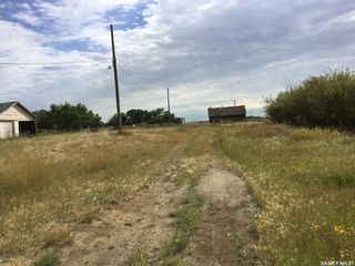 Photo 4: Wilkinson Land in Perdue: Lot/Land for sale : MLS®# SK824065