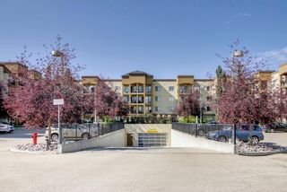 Photo 29: 436 400 PALISADES Way: Sherwood Park Condo for sale : MLS®# E4261853