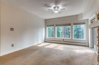Photo 8: 323 20 Discovery Ridge Close SW in Calgary: Discovery Ridge Apartment for sale : MLS®# A1128263