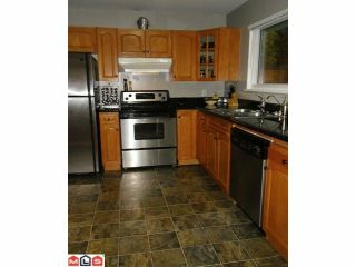 Photo 40: 10364 SKAGIT Drive in Delta: Nordel House for sale (N. Delta)  : MLS®# F1226520