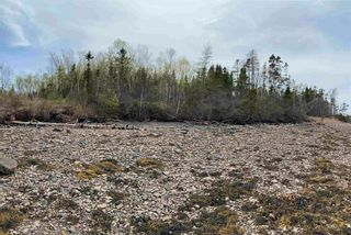 Photo 4: Lot Highway 320 in D'Escousse: 305-Richmond County / St. Peters & Area Vacant Land for sale (Highland Region)  : MLS®# 202112348