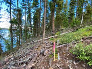 """Photo 20: LOT 7 S SOMERSET Drive: Cluculz Lake Land for sale in """"SOMERSET ESTATES"""" (PG Rural West (Zone 77))  : MLS®# R2596563"""