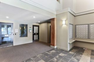 Photo 20: 315 35 RICHARD Court SW in Calgary: Lincoln Park Apartment for sale : MLS®# C4188098